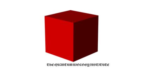 Quantum Biology Institute logo